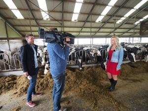 In de stal van zuivelboerderij De Gelder in Tijnje. Verslaggever Tom van 't Einde interviewt Frau Wietske, cameraman Ted Kraamer registreert.