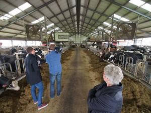 Jenny Vogel van De Gelder kijkt toe hoe enkele van haar 250 koeien worden gefilmd.