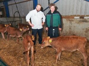 Chefkok Willem Schaafsma, boerenzoon uit Driezum, en veehouder Steven van der Zee in de stal met Jersey kalfjes. Schaafsma, eigenaar van restaurant Eindeloos in Leeuwarden, werd maandag 27 oktober 2014 uitgeroepen tot Meest Markante Horecaondernemer in de regio Friesland 2014-2015.