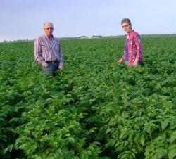 Aardappelkwekerij Jansen