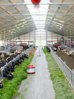 Kaasboerderij De Deelen