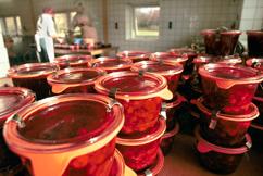 Groenhof ambachtelijke cranberry producten