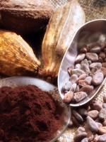 Klafa Chocola