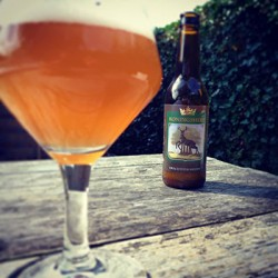 Drachtsterbrouwers