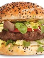Fryslân Burger®