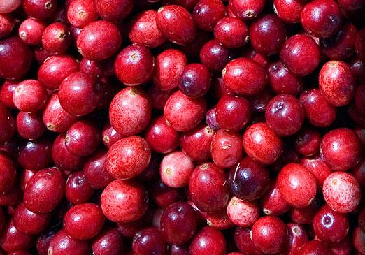 Cranberry Cultuur Skylge